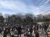 1594761 thum - 【新宿中央公園】フリーマーケット【都庁前】ジャンルもさまざま♪多くの人出で賑わう会場!