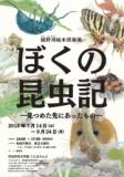 1597593 thum - 舘野鴻絵本原画展「ぼくの昆虫記-見つめた先にあったもの-」2018年7月14日(土曜日)から9月24日(月曜日)/町田市ホームページ