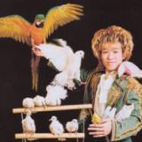 1615160 thum 1 - 「マジックショー&マジック教室」摩訶不思議なイリュージョンの世界を体感しよう